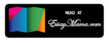 read essay writing guide